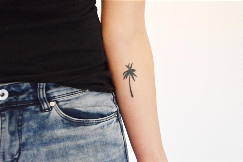 ~palmboom