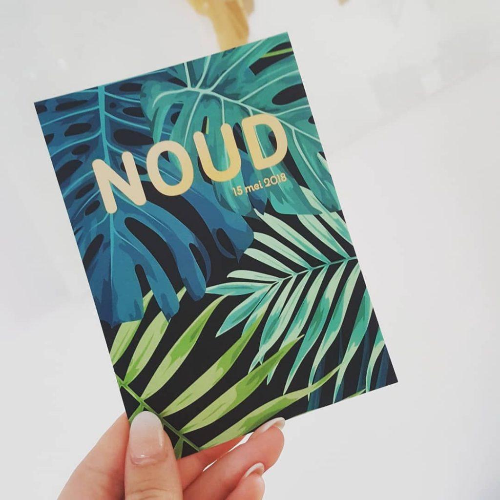 Het geboortekaartje van Noud