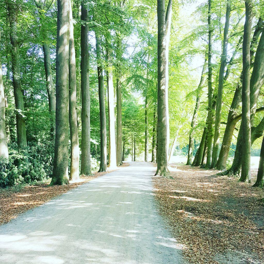 Photo Diary #19 Zomer in Nederland en een nachtje naar Volendam